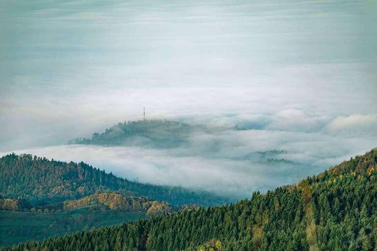 Nebelwelle am Schwarzwald