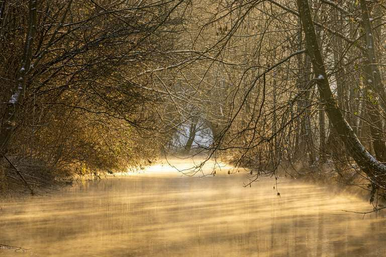 Goldener Fluß
