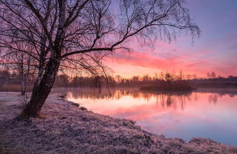 Erdekaut im Winter