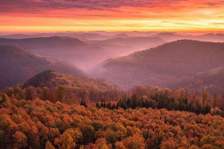 Farbrausch im Herbst