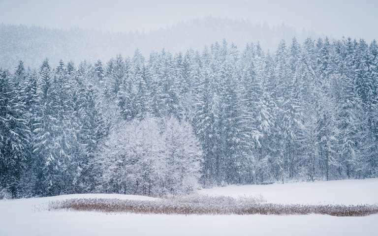 Berchtesgaden Winter 01-2021 – IMG_5579