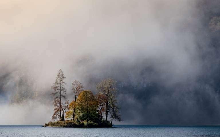 Insel im Herbstlaub 2