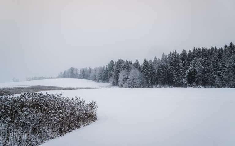 Winterlandschaft im Schnee 2