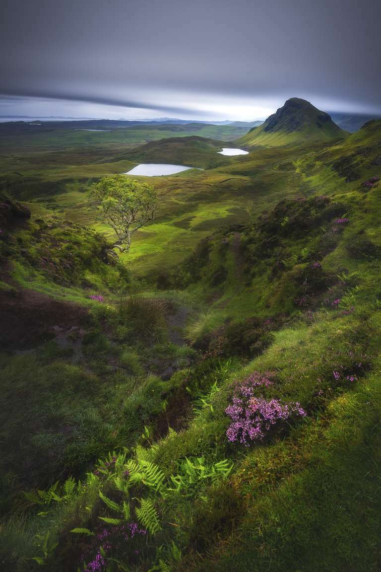 Endless Fairyland