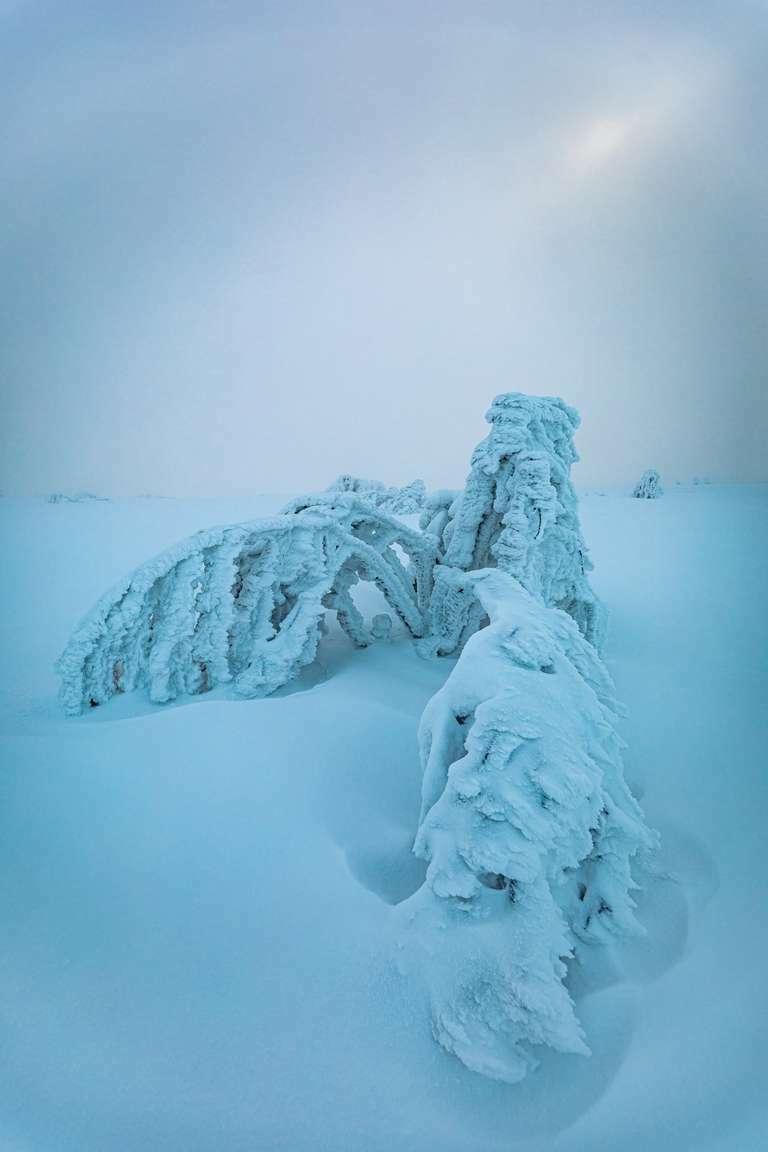 Hornisgrinde im Winter