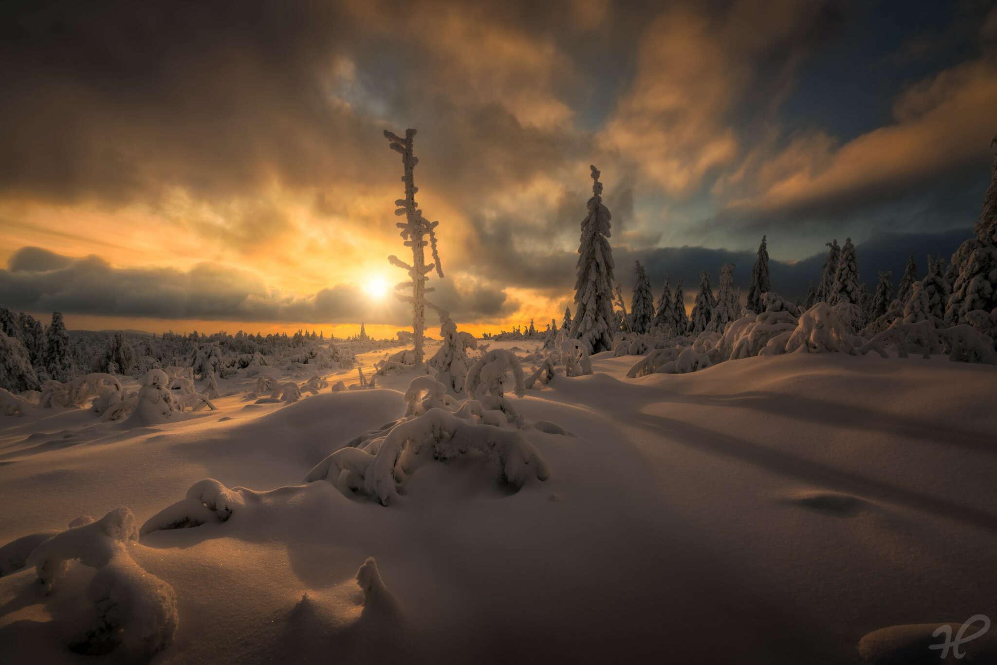 Ein winterlicher Augenblick
