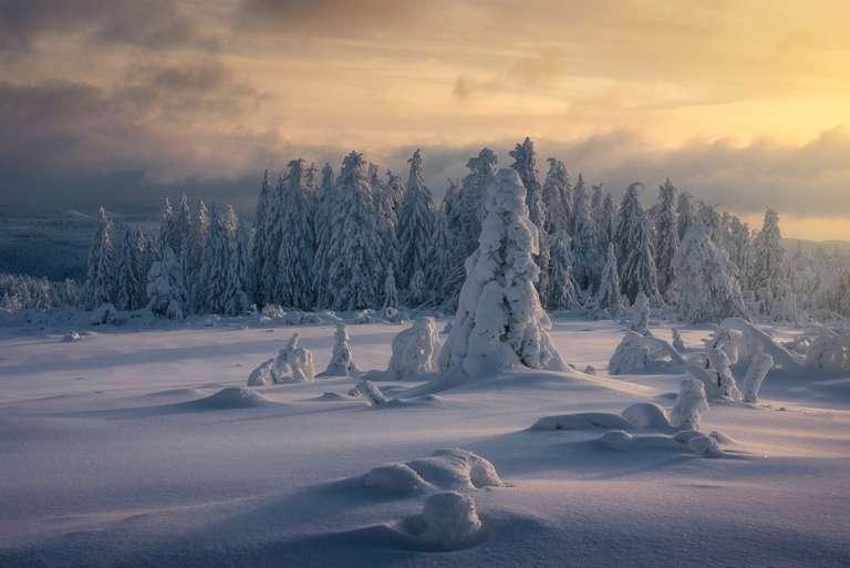 Ein winterlicher Moment II