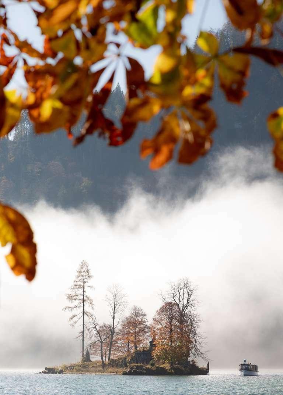 Insel im Herbstlaub 3