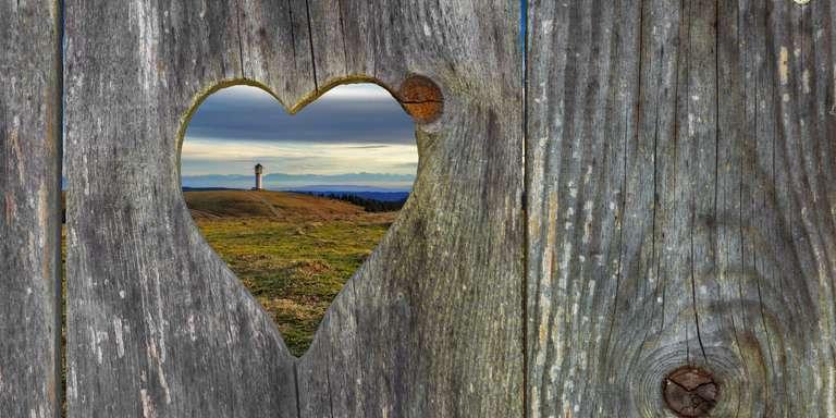 Blick durch das Herz