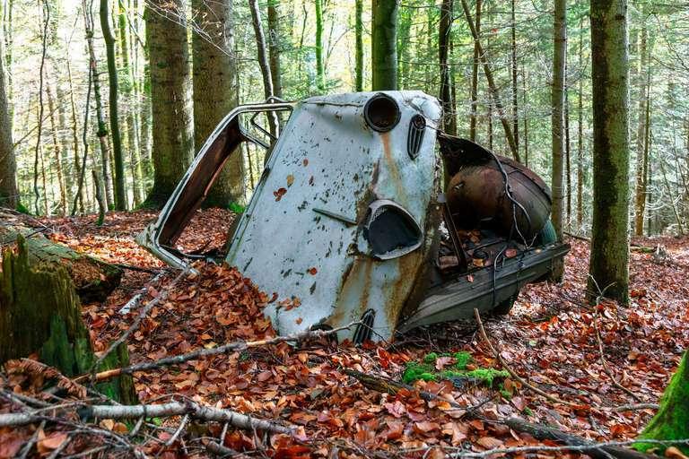 Autowrack im Wald