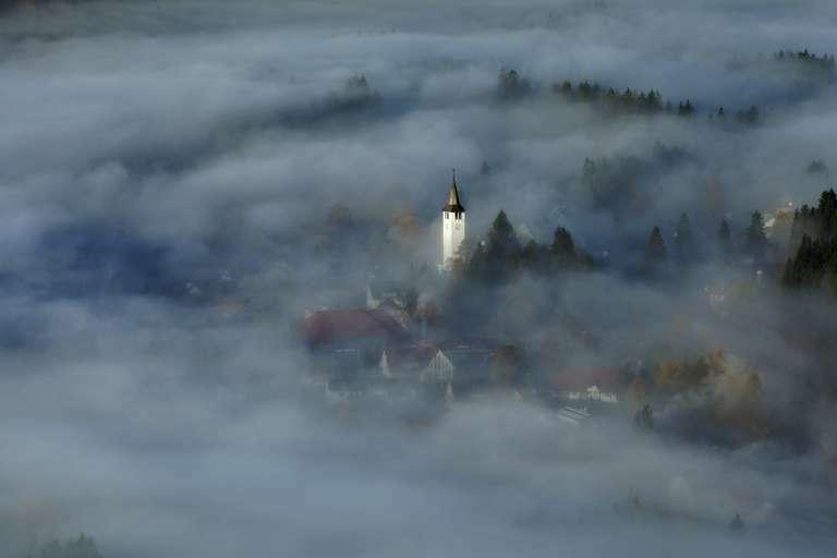 Titisee im Nebel