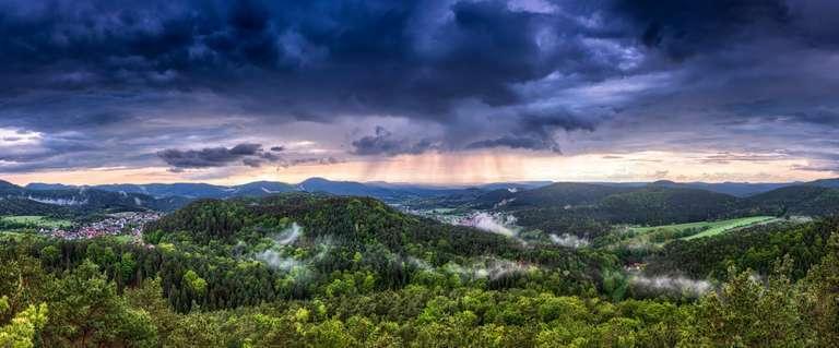 Regenschauer im Pfälzerwald