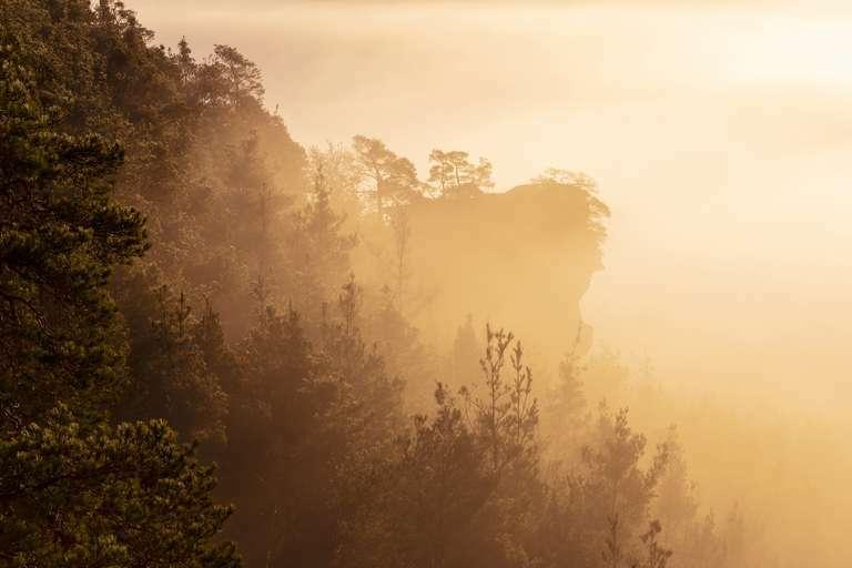 Felsriff im Nebel