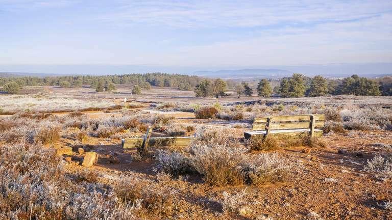 Mehlinger Heide im Winter