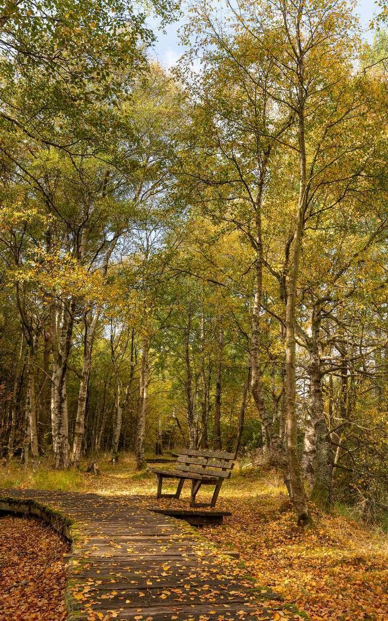 Rhön im Herbst 2020 – IMG_8260