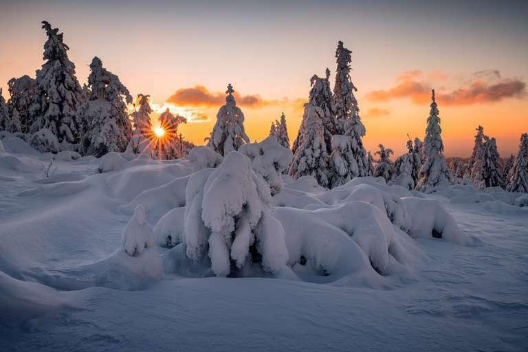Winterwonderland am Schliffkopf