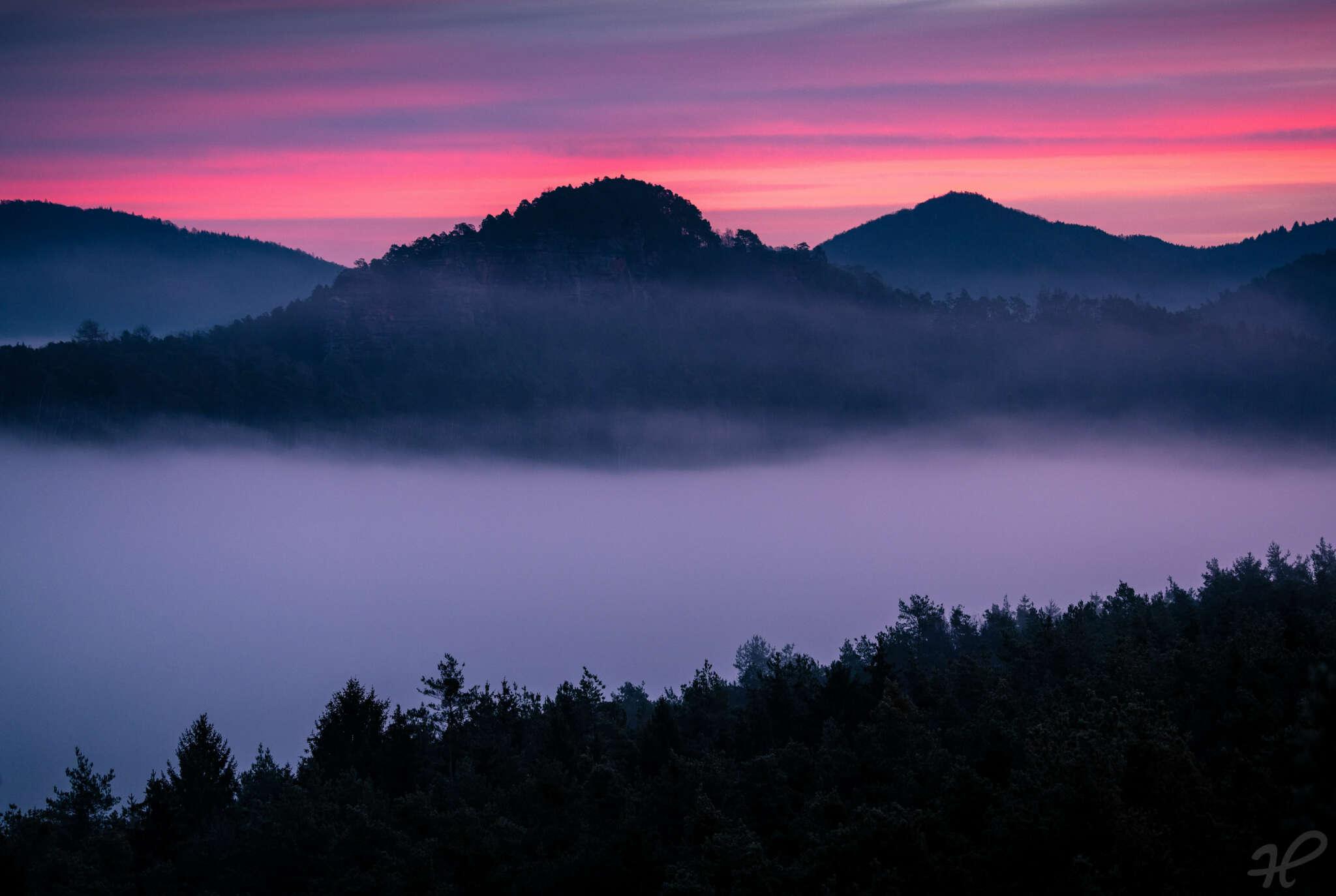 Purple Sky im Pfälzerwald