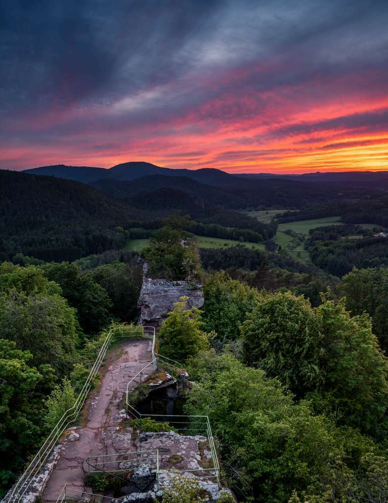 Burg Drachenfels im Abendlicht