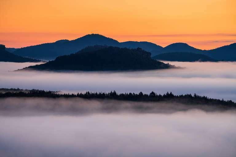 Nebelschleier über dem Pfälzerwald