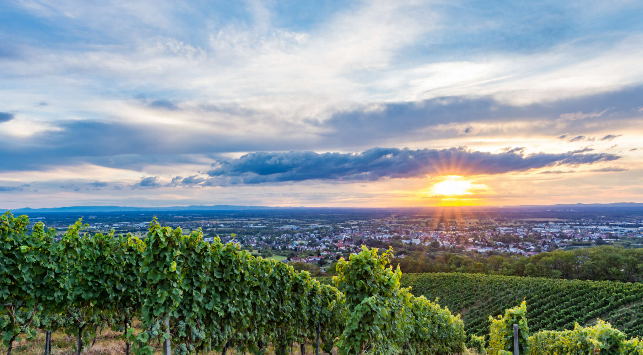 Sonnenuntergang über Bühl in den Weinbergen Bühlertals