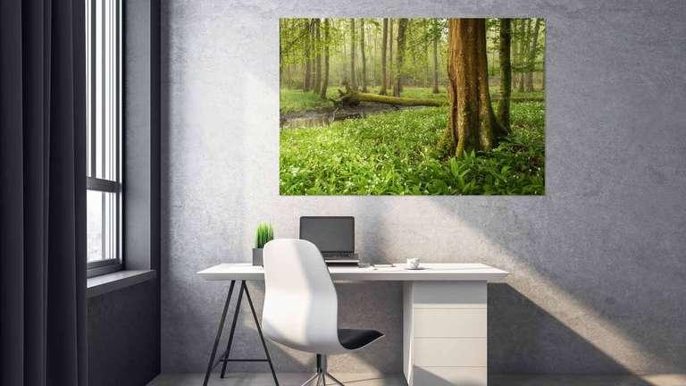 Wandbild von Heimatfotos aus der Pfalz in einem Büro oder Home Office - Pigmentdruck auf Leinwand in bester Bildqualität - Ein Foto von Fotograf und Heimatlicht Guido Sinram aus Neustadt an der Weinstraße - Das Foto zeigt einen wunderschönen grünen Wald in dem der Waldboden bedeckt ist mit Bärlauch