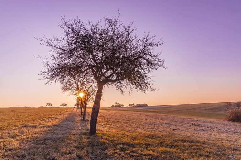 Ein frostiger Morgen.