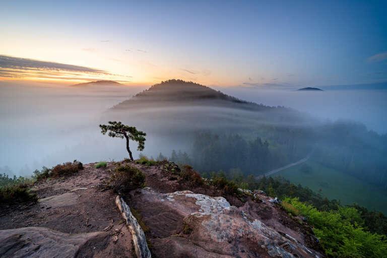 Nebelschichten zum Sonnenaufgang