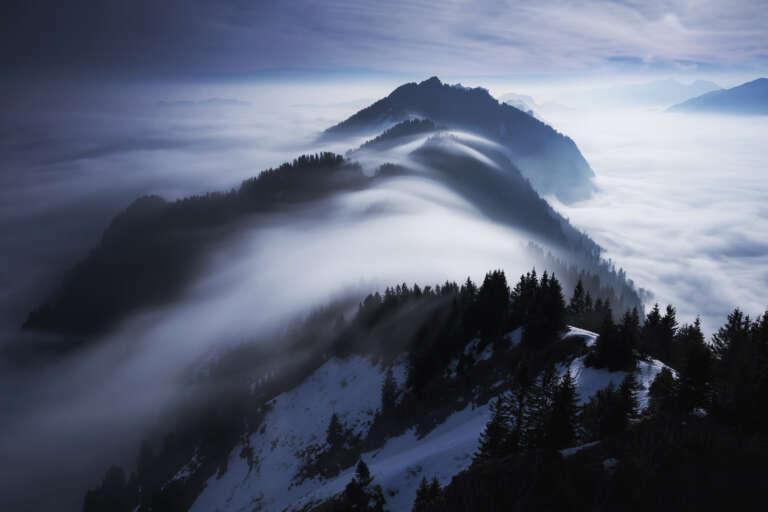 ... fog wave