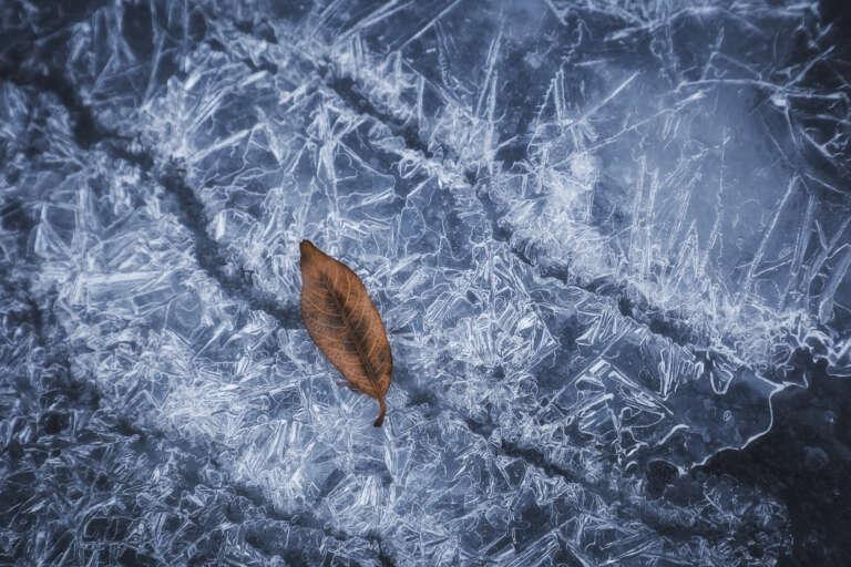 ... frozen in time