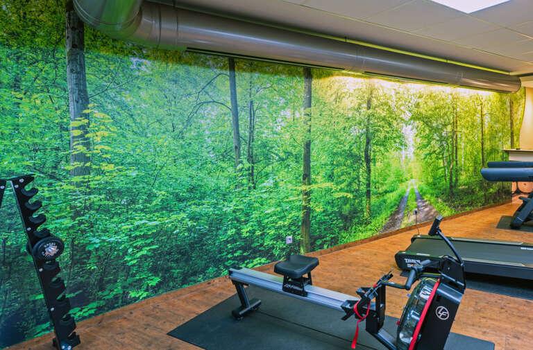 Ein großformatpanorama auf Fototapete im Fitnessraum des Hotels Froschbächle Bühl (Baden) - Ein Ultra-Hochauflösendes Foto von Evi Seeger im Auftrag von Heimatlichter